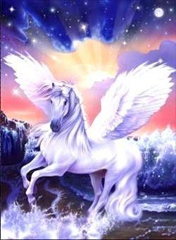 Belles images de licornes.